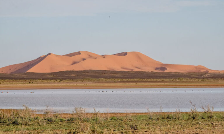 Morocco guided motorcycle tour. Experience the best places of morocco on motorbike